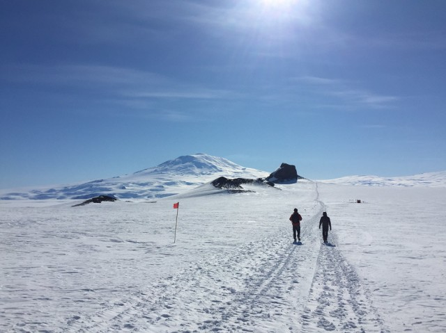 To prevent the casual hiker from falling into crevasses, the Castle Rock Loop Trail is marked with flags.  Castle Rock and Mount Erebus can be seen up ahead. (Photo by Refael Klein)