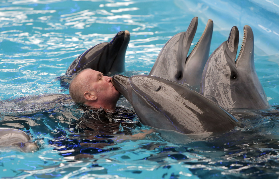 Dolphin therapy is helping to rehabilitate soldiers in Ukraine. Sergiy, a Ukrainian soldier who suffered a serious head injury in Eastern Ukraine, is seen here kissing one of the dolphins on March 1, 2016, during a therapy session at a Kiev aquarium. (AP)