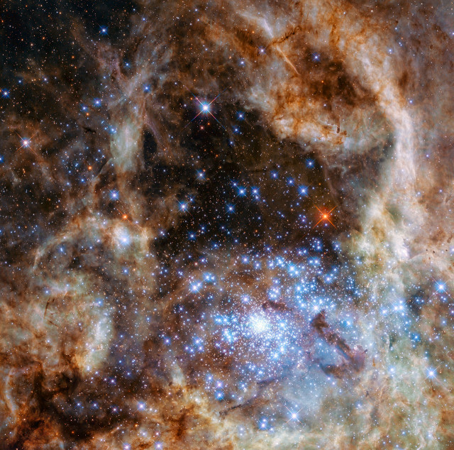 Hubble image shows the central region of the Tarantula Nebula in the Large Magellanic Cloud. Nine stars with more than 100 times the mass of the Sun were found in young and dense star cluster R136, which can be seen at the lower right of the image. (NASA, ESA, P Crowther (University of Sheffield))