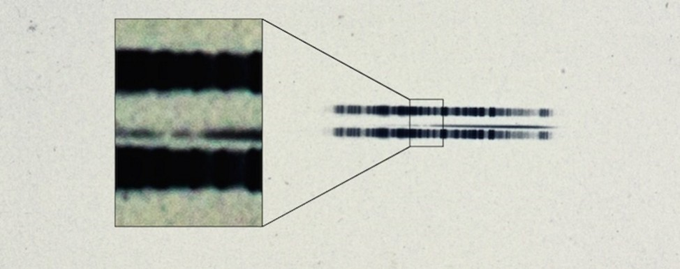 The 1917 photographic plate spectrum of van Maanen's star from the Carnegie Observatories' archive reveals first evidence of exoplanetary system. (Carnegie Institution for Science)