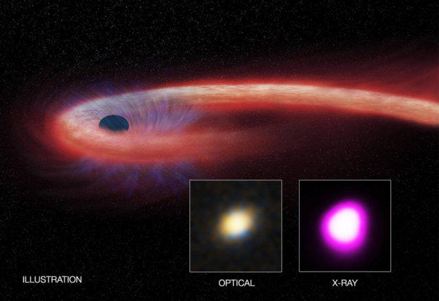 "Artist's illustration depicts what astronomers call a ""tidal disruption event,"" or TDE. (Illustration: CXC/M. Weiss; X-ray: NASA/CXC/UNH/D. Lin et al, Optical: CFHT)"