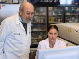 Ronald Levy (left) and Idit Sagiv-Barfi led the work on a possible cancer treatment that involves injecting two immune-stimulating agents directly into solid tumors. (Steve Fisch/Stanford University)