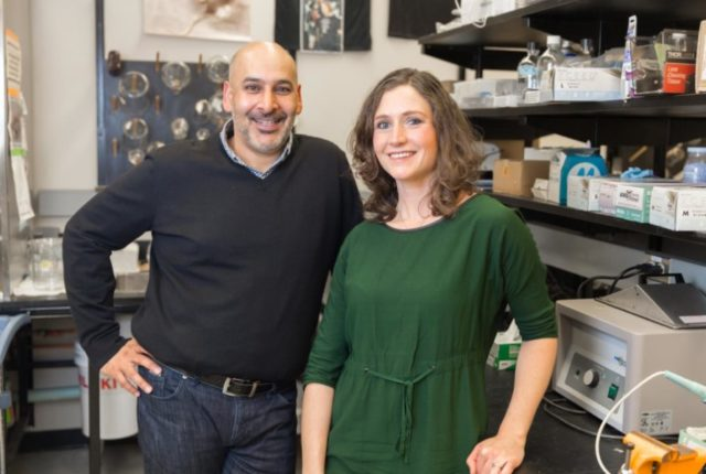 Jaideep Bains, professor in the Department of Physiology and Pharmacology, and Toni-Lee Sterley, postdoctoral fellow in Bains' lab and the study's lead author. (Adrian Shellard, Hotchkiss Brain Institute)