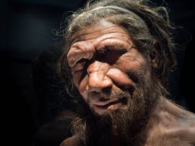 Neanderthal Man (Michael Brace via Flickr/Creative Commons - Attribution-NonCommercial-NoDerivs 2.0)