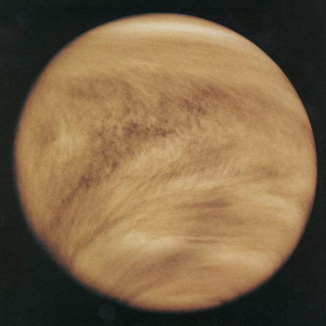 Venus is one of the brightest objects in Earth's nighttime sky because its thick white clouds reflect much of the sun's light. The planet's widespread clouds can be seen in this ultraviolet rendering. (NASA)