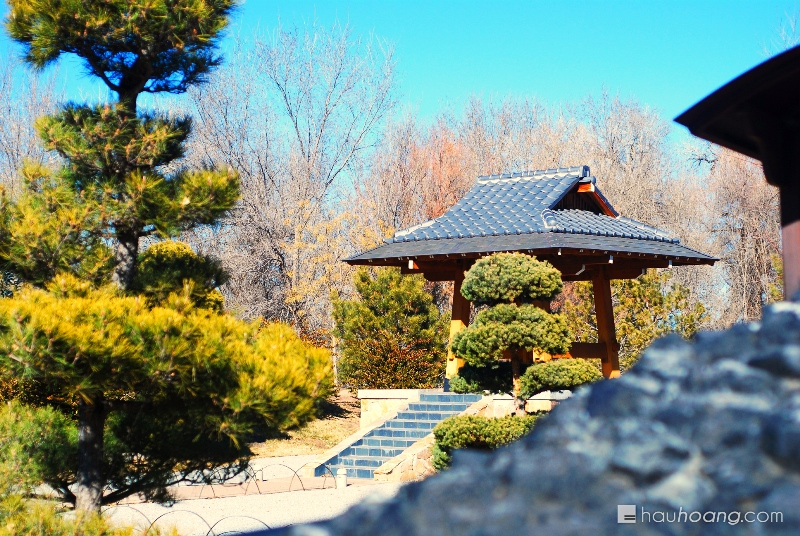 The winter had been quite harsh so the there was not much in the botanical garden. However though, I really liked this Japanese Zen garden.