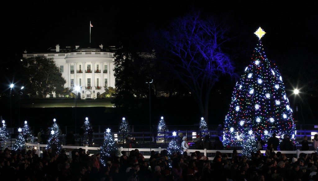 The 2011 National Christmas Tree, all lit up (Photo: AP)
