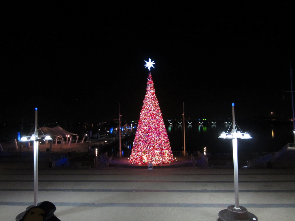 The National Harbor Christmas tree lit up in 2011 (Creative commons photo: Nguyen Nguyen)