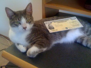 This is what a relatively recent U.S. Savings Bond looks like.  What purpose the cat serves in telling the story, I'm not sure.  (minivanmegafun, Flickr Creative Commons)