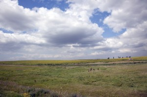 Like wide-open spaces?  There are plenty of them across sparsely settled North Dakota. (Carol M. Highsmith)