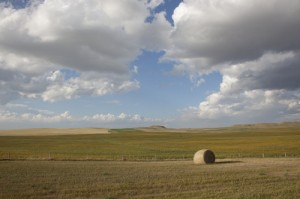 "They call neighboring Montana ""Big Sky Country,"" but the sky seems to go on forever in North Dakota as well.  There certainly aren't mountains or many tall structures to keep the wind from blowin' down the plains. (Carol M. Highsmith)"