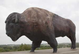 "This just in: After standing, alone but proud, on the North Dakota prairie for 51 years, the world's largest (cement) bison, or buffalo, only this year got a name.  It's ""Dakota Thunder.""  (Carol M. Highsmith)"