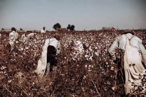 "This photograph was taken in 1950, but the scene's not much different these days in the poorest, most rural counties of Mississippi, which was — and remains to a degree — ""the Land of Cotton."" (Library of Congress)"