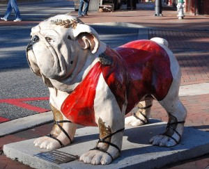 "There has been a long success of ""Uga"" bulldog mascots.  Uga, as in ""University of Georgia.""  Perhaps instead of clobbering other teams, the Bulldogs slobber them.  (hyku, Flickr Creative Commons)"