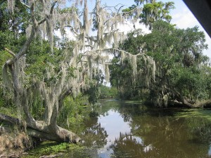 You won't get much of a footing in Louisiana's Bayou Country.  Even where there's land among the swamps and streams, it's soggy.  (pop top lady, Flickr Creative Commons)