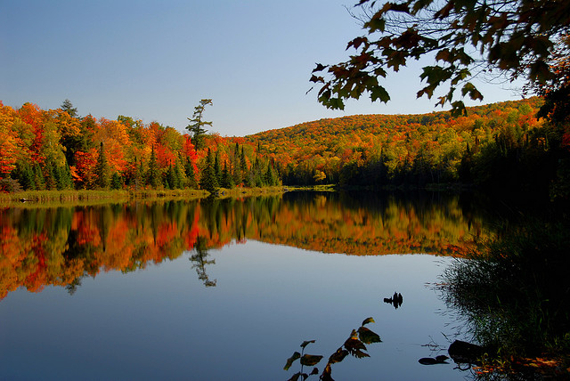 "You have to admit, fall is spectacular in the U.P. ""North Country."" (jsorbieus, Flickr Creative Commons)"