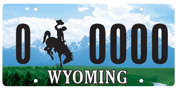 Wyoming's license plates salute not just cowboys, but rodeo cowboys in particular.  Rodeos are a big entertainment draw in that rugged western state that has no major-league sports teams whatsoever.