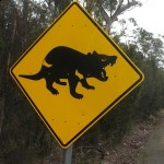 I'm thinking of using this sign as a warning that Wild Words are ahead! (Peter Shanks, Wikipedia Commons)