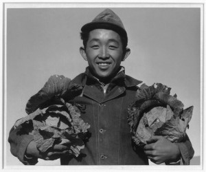 Richard Kobayashi, a Japanese-American confined at the Manzanar Relocation Center during World War II, holds cabbages that he harvested.  (Library of Congress)