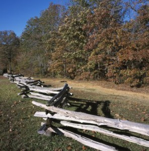 This split-rail fence marks a spot of intense fighting called 'The Hornet's Nest' at Shiloh.  (Carol M. Highsmith)