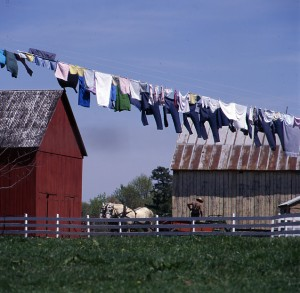 Lush fields, sturdy barns, clothes on the line at this Amish farm, and not an electrical wire to be found.  (Carol M. Highsmith)