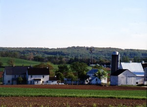 Another tidy, green, fertile Amish farm.  (Carol M. Highsmith)