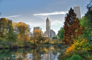 Who could deny that Central Park is magnificent in Autumn?  (Ed Yourdan, Wikipedia Commons)