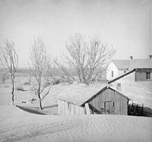 That's piles of dust around dead trees and farm cabins in Liberal, Kansas.  (Library of Congress)