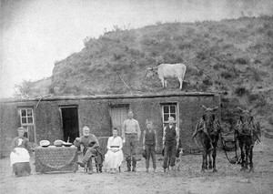 Things haven't regressed to sod-house days, at least not  yet.  Yes, that's a cow on the roof.  (Library of Congress)