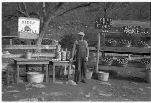 "Along the Interstates, there's no place to pull over for apples, cider, or ""sider and appels.""  But such stands remain on U.S. 11.  (Library of Congress)"