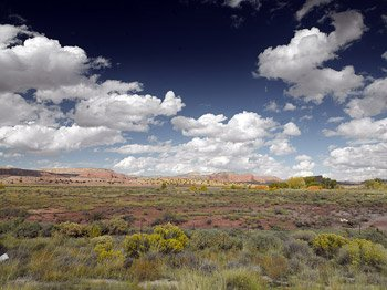 By the time you reach Northern Arizona, you're SURE you're in the West.  (Carol M. Highsmith)