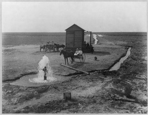 This was not my mother's farm or horsecart.  But it could have been.  (Library of Congress)