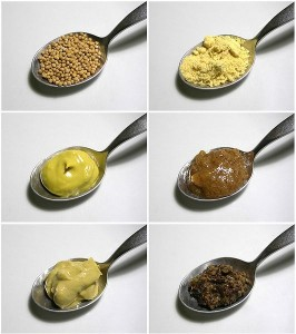 Mustard seeds, upper left, can be made into all sorts of things, including pungent, burning goop spread onto the chests of unfortunates with heavy chest colds.  (Wikipedia Commons)