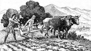 In this 1920 drawing, Indian residents of the Franciscans' California missions are shown plowing a field.  (Wikipedia Commons)
