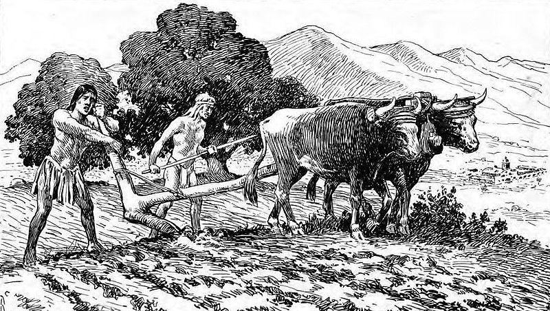 Yummy men plowing