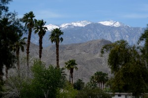 Palm Desert even has a neat mountain view.  (tracie7779.jpg)