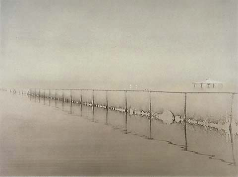 Joan Myers's enchanting view of a fence at the Salton Sea. (Courtesy, Joan Myers)