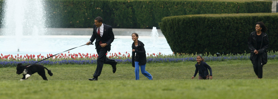 President Barack Obama runs with his family and and their new pet dog Bo, a six-month old male Portuguese water dog, on the South Lawn at the White House in Washington, April 14, 2009. Obama is joined by first lady Michelle Obama (R) and their daughters Malia and Sasha (2nd R). (Reuters)