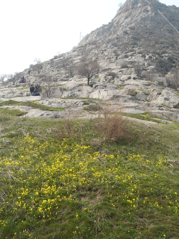 Erta bahorda tog' havosi o'zgacha. O'sh, Sulaymon tog'i, mart, 2015